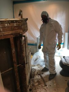 Technician Performing Mold Remediation In A Flooded Home