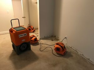Drying Out A Bedroom To Prevent Mold Growth