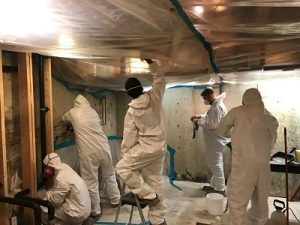 Mold Experts At Work